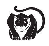 Черная пантера на белой предпосылке Стоковое фото RF