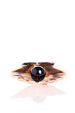 черная перла Стоковое фото RF