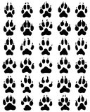 Черная печать лапок собак Стоковое Изображение RF