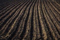 Черная почва вспахала поле Текстура земли Стоковые Изображения RF