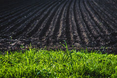 Черная почва вспахала поле Текстура земли Стоковые Фото