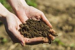 Черная почва в руках женщины Стоковая Фотография RF