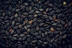 Черная предпосылка макроса семян сезама Стоковые Изображения RF