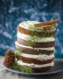 черная пуща торта Стоковое Фото