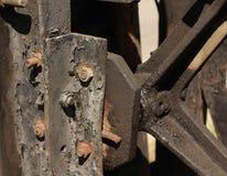 Черная ржавчина Стоковые Фотографии RF