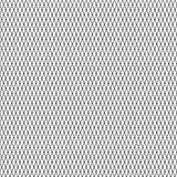 черная сеть Стоковое Фото