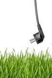 черная сила штепсельной вилки зеленого цвета травы Стоковое Изображение RF
