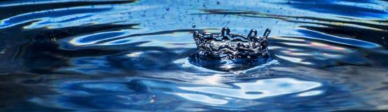 черная синь Стоковое Фото