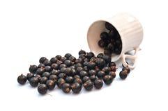 черная смородина чашки Стоковое Фото