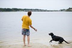 Черная собака Лабрадора сидя на береге пруда Стоковые Изображения