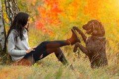 Черная собака остолопа представляя в парке осени стоковое изображение