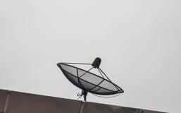 Черная спутниковая антенна-тарелка на крыше Стоковые Фотографии RF