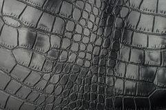 Черная текстура кожи гада с для предпосылкой Стоковые Фото