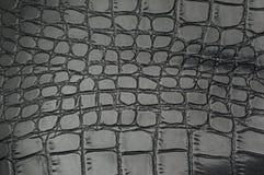 Черная текстура кожи гада с для предпосылкой стоковая фотография rf