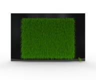 черная трава tv Стоковые Фотографии RF