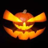 черная тыква изолированная halloween Стоковая Фотография