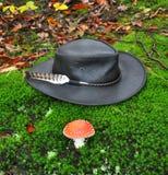 черная шляпа Стоковые Изображения RF