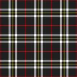 черная шотландка Стоковые Фото