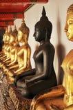 черное буддийское положение Стоковое Изображение RF