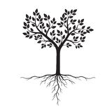 Черное дерево с корнями также вектор иллюстрации притяжки corel иллюстрация вектора