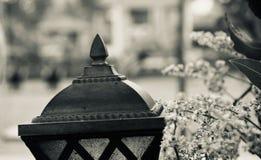 Черное металлическое фото объекта уличных фонарей изолированное стоковые фотографии rf