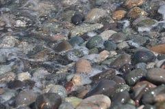 черное море Волны моя вниз скалистый пляж Стоковая Фотография