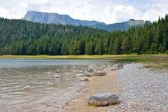 Черное озеро (jezero) Crno - Durmitor Стоковые Фотографии RF