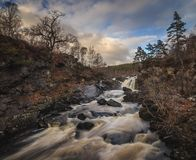 Черное река воды в северо-западе Шотландии, падениях Rogie около Tarvie стоковая фотография rf