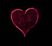 Черное сердце Bokeh бесплатная иллюстрация