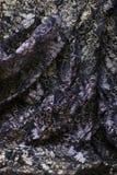 черное тканье стоковая фотография rf
