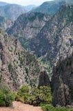 черное gunnison каньона Стоковые Изображения