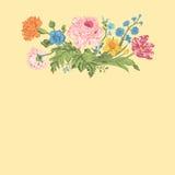 черной покрашенная карточкой флористическая радужка цветка белая иллюстрация штока