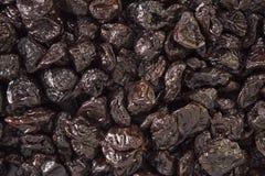 черносливы Стоковая Фотография RF