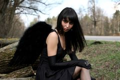 чернота ангела Стоковые Изображения RF