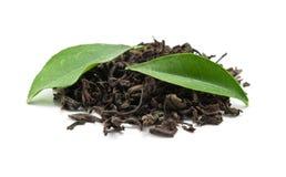 чернота выходит чай Стоковые Фото