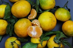 Чернота изолята плодоовощ мандарина Стоковые Изображения RF