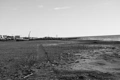 Чернота и wite зимы моря Стоковое фото RF