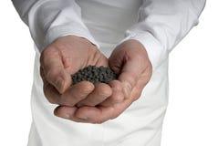 чернота придала форму чашки почва w камушков мужчины рук грязи открытая Стоковая Фотография