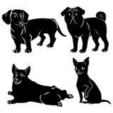 Чернота собак иллюстрация штока