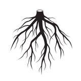 Чернота укореняет дерево также вектор иллюстрации притяжки corel иллюстрация вектора