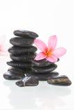 чернота цветет камни frangipani Стоковые Изображения
