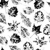 Черно-белая безшовная картина падая листьев Стоковая Фотография