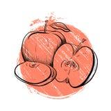 Черно-белая выгравированная иллюстрация яблок с точкой покрашенной grunge Стоковые Фото