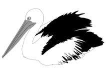 Черно-белая иллюстрация пеликана Стоковая Фотография RF