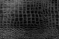 Черно-белая предпосылка конспекта картины текстуры цвета может быть пользой как обложка брошюры заставки бумаги стены или для нас Стоковые Фото