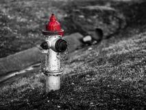 Черно-белая съемка пожарного гидранта с красным верхом стоковая фотография rf