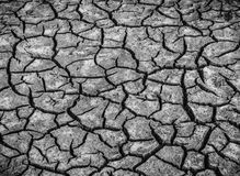 Черно-белое изображение предпосылки сухой треснутой грязи почвы или стоковые изображения rf