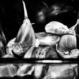 черно-белое фото, деталь стеклянного сосуда стоковые фото