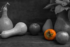 Черно-белое фото сбора яблок, груши, рябины и насоса Стоковое Фото