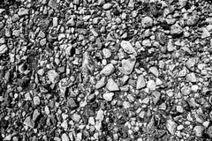 Черно-белые камешки пляжа в Stamford, Коннектикуте Стоковое Изображение RF